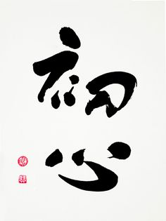 "Japanese calligraphy 初心 Beginner's Mind… ""In the beginner's mind there are many possibilities, but in the expert's, there are few."" ~ Shunryu SUZUKI"