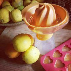 lemon & orange ice cubes to flavour water