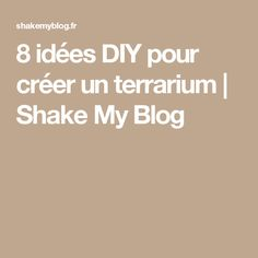 8 idées DIY pour créer un terrarium   Shake My Blog