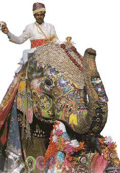 Jaipur Elephant Festival.