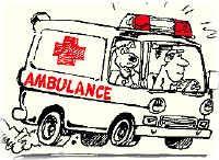 Good travel insurance and Helpx -- worldwide work exchange website