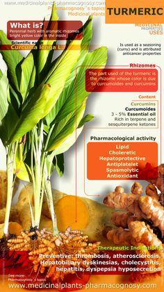 Turmeric Benefits Infographic