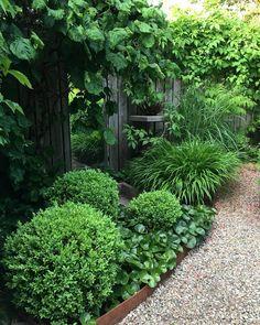 Green is really nice. Green is nice lovely and peaceful . Green is nice lovely and peaceful. Green is really nice. Green is nice lovely and peaceful. Small Courtyard Gardens, Small Gardens, Outdoor Gardens, Cottage Garden Design, Growing Gardens, Side Garden, Garden Path, Garden Spaces, Landscape Design