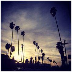 Sunday's best in LA @iBakefilm | Follow @ pslilyboutique on Instagram #LA #losangeles #california
