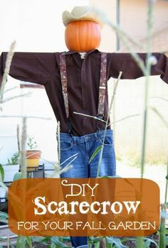 Five Little Homesteaders: 6 Steps for Making a $20 Scarecrow