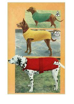 Vintage 3 Dog Coats PDF knit pattern  download by Superlucky8com