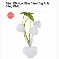 Đèn LED ngủ nấm cảm ứng ánh sáng OML với giá ₫59.000 chỉ có trên Shopee! Mua ngay: http://shopee.vn/ankomart/1810108 #ShopeeVN