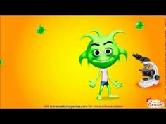 Virus and Bacteria video for kids