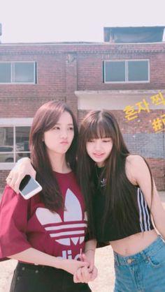 Jisoo and Lisa of Blackpink Wose Blackpink Jisoo und Lisa von Blackpink Wose Lisa Bp, Jennie Lisa, Blackpink Jisoo, Bts And Twice, I Love Girls, Cool Girl, South Korean Girls, Korean Girl Groups, Blackpink Youtube