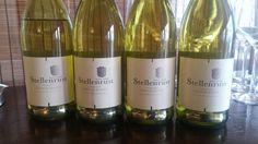 Stellenrust Stellenbosch Chenin Blanc 2012  One of Stellenbosch and South Africa finest  #SouthAfrica #Wine #MiguelChan