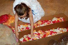 www.fiftyflowers.com  12,000 fresh rose petals in colors you choose