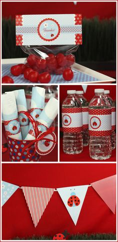 ladybug party ideas | special thanks to The Celebration Shoppe for partnering with us ...