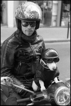 Paris - Street - Biker Dog / Safety First - © Carl Westergren by cjawest, via Flickr