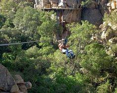 Magaliesberg Canopy Tour - Johannesburg I Am An African, My Land, Fun Activities, Canopy, South Africa, Travelling, Tours, Holidays, Beautiful