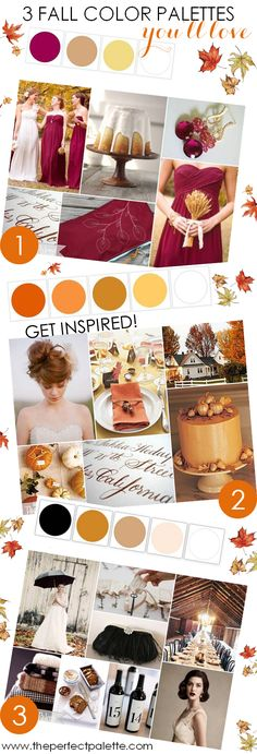3 fall color palettes you'll love