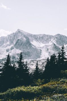 Nature Wall Decor - Nature Photography - Mountain Forest Photo - Mountains Photography - Vertical - Digital Photo - Digital Download