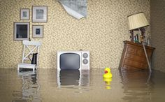 How to Deal with Floods and Flood Damage
