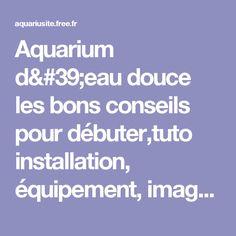 Aquarium d'eau douce les bons conseils pour débuter,tuto installation, équipement, images, photos.