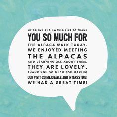 Lovely message received from Eileen who brought her friend to walk the alpacas. #alpaca #alpacawalks #northumberland #itsinournature #glampingnorthumberland