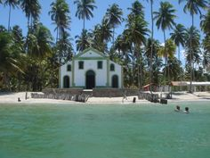 Praia dos Carneiros, Pernambuco » Cant load my pics...but i spent there 5 years ..every year vacation in here..so real pic!