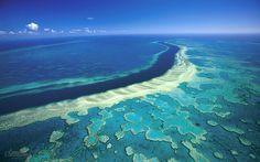 La fascinante Gran Barrera de Coral, un mundo mágico bajo las aguas del mar