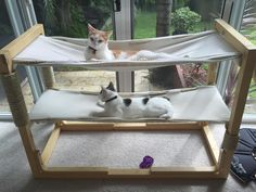 This cat-sized hammock setup is an easy build that's the purrrfect living room addition for Makers with furry friends.
