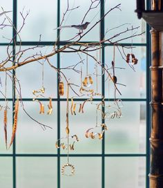 A large branch in a window is decorated for the holidays with IKEA KONICIS cookie cutters