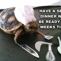 He Makes Everything in the Slow Cooker