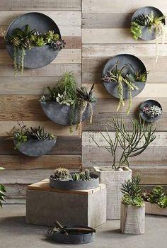 indoor vertical garden - Google Search