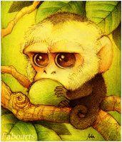 Capuchinos por faboarts