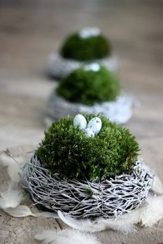 super OSTERN-Ideen great EASTER ideas Related posts: 20 Great Last Minute DIY Easter Decor Ideas Easter crafts with children – 3 unconventional ideas Ideas for Easter Decorations Diy Osterschmuck, Easy Diy, Diy Spring, Diy Easter Decorations, Decoration Crafts, Decor Diy, Diy Ostern, Easter Table, Easter Wreaths