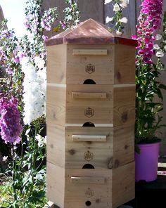 hex honey hives | hex-hive-for-randy-sue