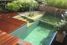 I have collected many different ideas on how to incorporate the perfect pool for your backyard. So, go on and check out this Outstanding Backyard Pool Ideas That Will Make You Say WOW! Natural Swimming Ponds, Small Pools, Small Backyards, Dream Pools, Swimming Pool Designs, Swimming Pool Pond, Pool Fun, Pool Houses, Jacuzzi