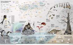 This is the remodeling of the Oceanografic in Valencia. Special infographic on the new species and habitats that have been introduced or modified in the complex