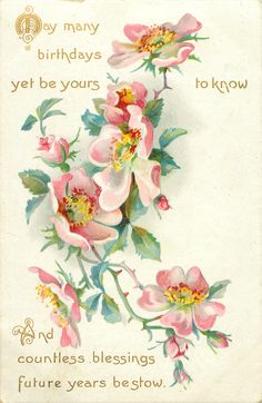 MAY MANY BIRTHDAYS YET BE YOURS TO KNOW AND COUNTLESS BLESSINGS FUTURE YEARS BESTOW  dog-roses
