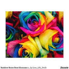 "Rainbow Roses Rose blossoms romantic peace joy 4.5"" X 5.6"" Flyer"