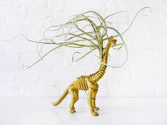 Prehistoric Air Plant Dino Dood - Mr. Bones - The Air Plant Vegetarian Dinosaur Garden- Featured on HBO Girls. $55.00, via Etsy.