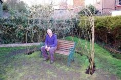 Image result for how to build willow structures uk