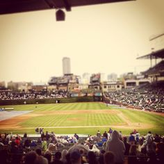 Chicago Cubs!! Terrible team but a lot of fun times @ Wrigley :)