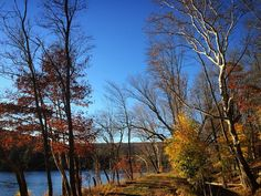 #WonderWatch 2015-137 Reward for Voting #UpperDelawareRiverRegion #DelawareRiver #towpath #nature #NaturePhotography #sandylongphotos #Autumn #ElectionDay #GlimpsesOfFall #beauty #fall #HeartGround #TakeAWalk #November
