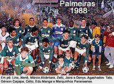 PALMEIRAS 1988