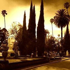 Glitterati Private Tours: The beautiful Hollywood Forever Cemetery and the roaming peacocks.  http://glitteratitours.com/
