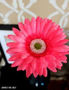 Gerbera Daisy~ aka: our Girlfriendology Friendship flower