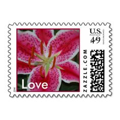 @@@Karri Best price          	Stargazer Lily Love Postage           	Stargazer Lily Love Postage online after you search a lot for where to buyThis Deals          	Stargazer Lily Love Postage Review on the This website by click the button below...Cleck Hot Deals >>> http://www.zazzle.com/stargazer_lily_love_postage-172130054269271171?rf=238627982471231924&zbar=1&tc=terrest