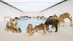 Top 10 Best Installation art Works
