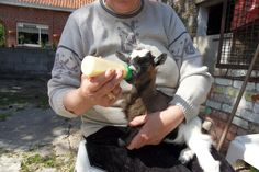 mein flaschen kind  bambi  nun 3 jahre alt mutter war 20 es war ein unglueck sie sollte nicht mehr babys haben