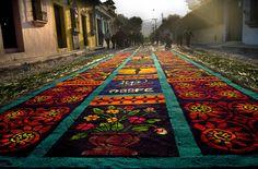 Flower carpets - Alfombras de Antigua Guatemala