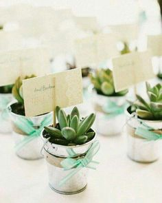 Suculentas, el toque perfecto / Succulents, the perfect touch Succulent Wedding Favors, Wedding Favours, Wedding Gifts, Our Wedding, Dream Wedding, Bridal Shower, Baby Shower, Wedding Giveaways, Baptism Favors