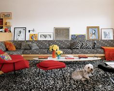 Romeo, the cute terrier of Paper magazine editor Kim Hastreiter, gets cozy on a sweeping shag rug from ABC Carpet & Home in the living room of her Manhattan apartment. The Saarinen womb chair and ottoman are by Knoll, and the built-in sectional was designed by architect Milton Klein and is covered in Henry Calvin's Hypnotic fabric.    - ELLEDecor.com