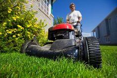 Mow a neighbor's grass.  Jennifer C. #letsneighbor @vivint